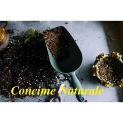 Come preparare un concime naturale